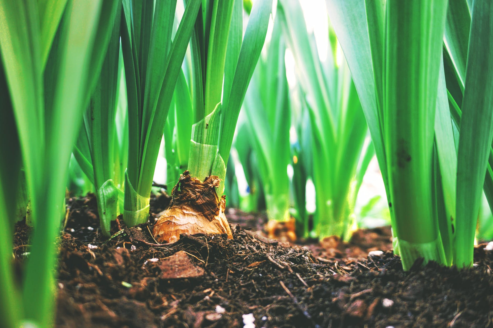 Ministarstvo poljoprivrede pozvalo na suradnju u izradi strateških dokumenata